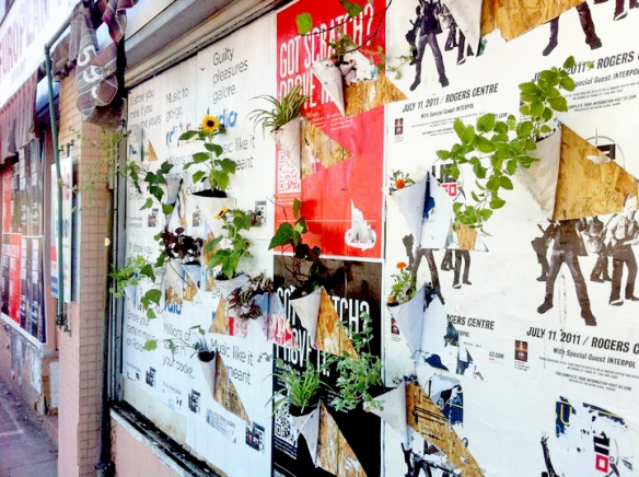 Poster plants installed by the Youth Street Art Mentorship team at Spadina and Dundas.